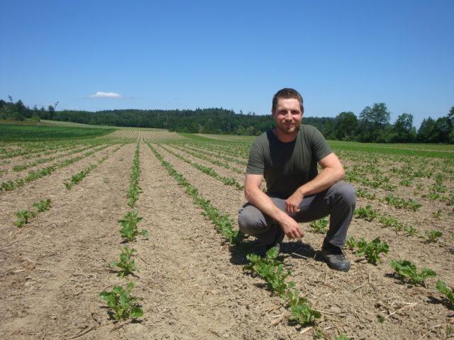 """David Kilchenmann bedauert die abnehmende Zuckerrübenfläche in der Schweiz. """"Zuckerrüben sind für unseren Betrieb nach wie vor eine wirtschaftliche Kultur"""", sagt er."""